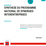 Synthèse du Programme National de Synergies Inter-entreprises (PNSI)